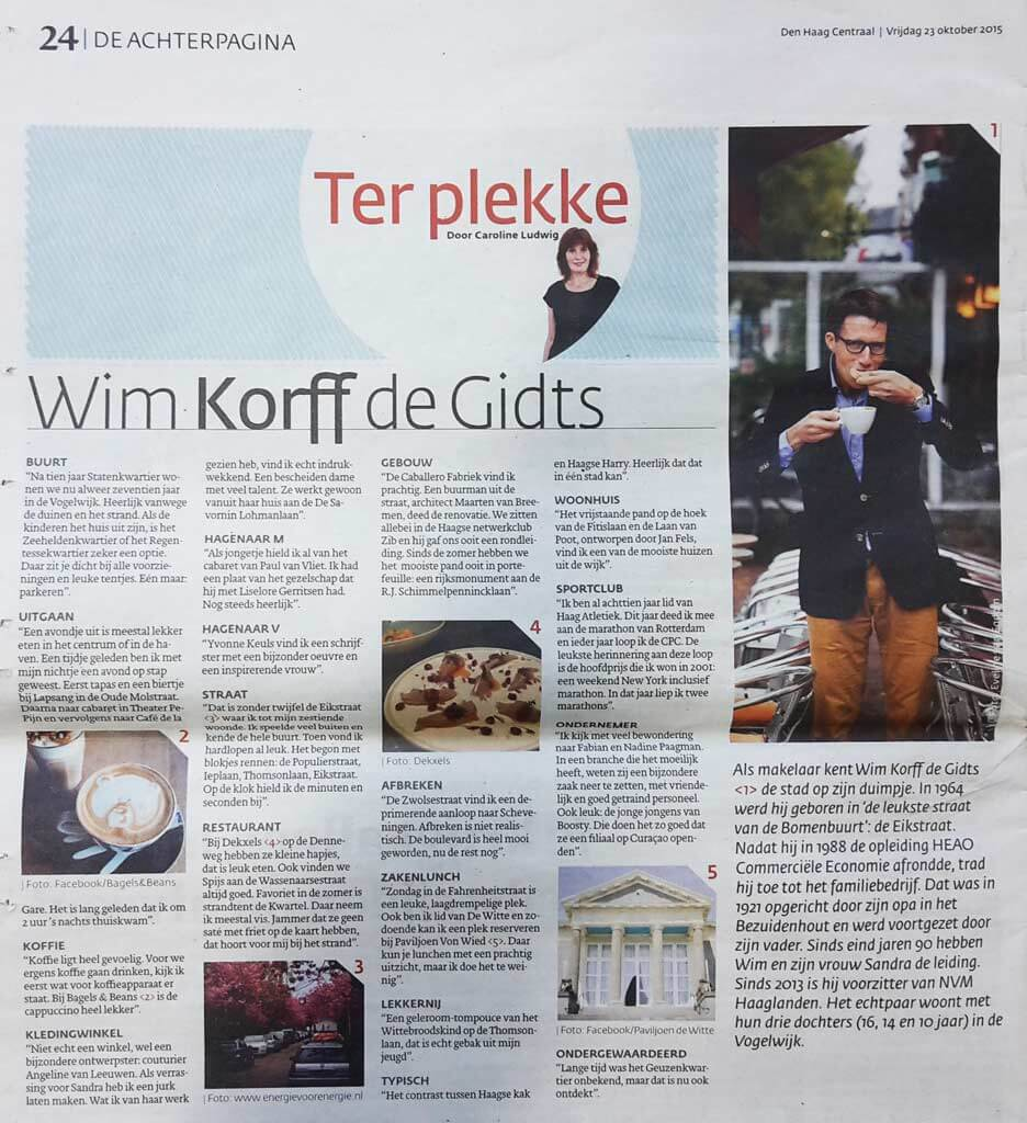 Wim Korff - den Haag Centraal - Recensie