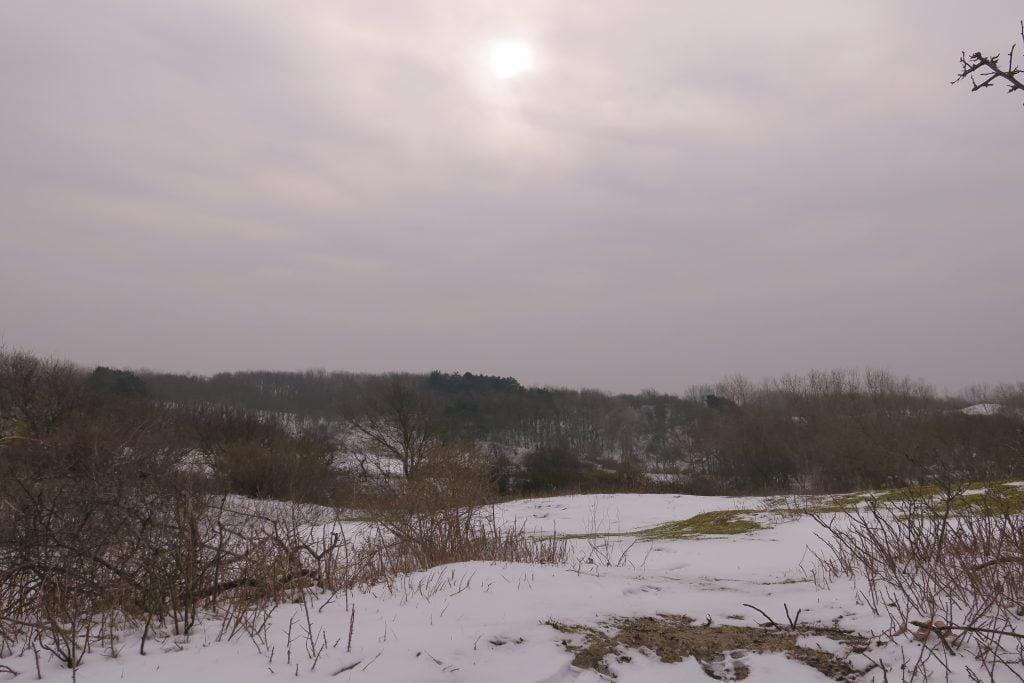Westduinpark-voorjaar-DenHaag