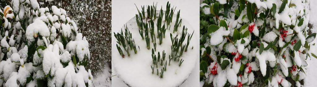 sneeuw-tuin-AvLCouture-DenHaag